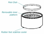 GRAFT COOLER AND PETRI DISHES