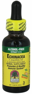 Echinacea Alcohol Free by Nature's Answer - 1oz.