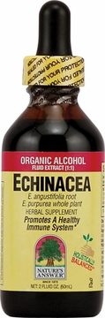 Echinacea Root by Nature's Answer - 2oz.