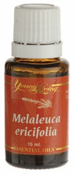 Young Living Melaleuca Ericifolia Essential Oil - 15 Milliliters