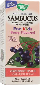 Sambucus for Kids Berry Flavor Syrup by Nature's Way - 4oz.