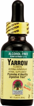 Yarrow Flowers by Nature's Answer - 1oz.