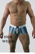 Designer Men's Stripe Trunk