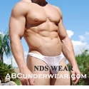 Fishnet Thong By NDS Wear