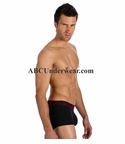 Gregg Homme Volumator Boxer Brief