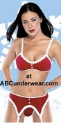 Velvet Bra Top, Garter and Thong Set - Clearance