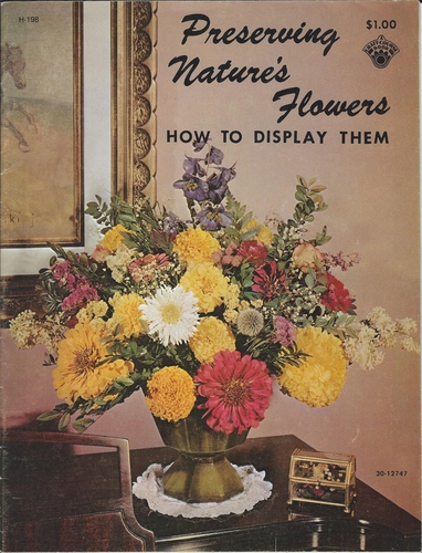 Preserving Nature's Flowers And How To Display Them 1972