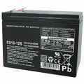 MK Battery ES10-12S - 12 Volts, 10 Amp Hours/20 Hours