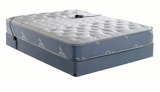 Boyd Night Air Skylight Pure Form 8100 14 Inch 2 Chamber Airbed at AirbedIq