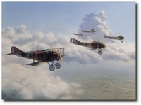13th Aero Squadron by Jim Laurier (SPAD XIII)