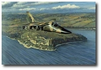 Aardvark Over Urquhart Castle by Ronald Wong (F-111 Aardvark)