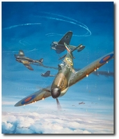 Achtung Spitfire by Roy Grinnell
