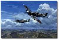 Bombing in the Balkans by Ronald Wong (Spitfire)