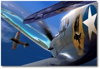 Close Encounters by Ron Cole (P-40 Warhawk)