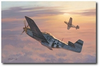 Friend or Foe by Roy Grinnell (P-51)