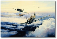 Knights of the Eastern Front by Robert Taylor (Bf109)