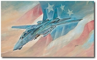 Last Time Baby! by Bryan David Snuffer (F-14 Tomcat)