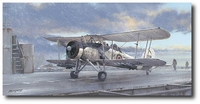 On a Wing and a Prayer by Philip West (Fairey Swordfish)