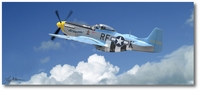 P-51 Mustang by Larry McManus