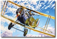 Qantas Founders by Troy White (Bristol Fighter)