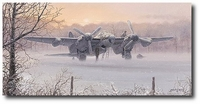 Wings of Dawn by Philip West (Mosquito)