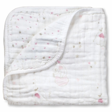 Aden + Anais Dream Blanket - Lovely