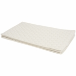 Arm's Reach Mini/Clear-Vue/Little Palace & Cambria Organic Mattress