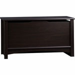 Child Craft Shoal Creek Storage Chest in Jamocha