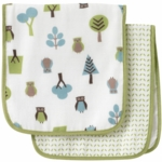 DwellStudio Owls Multi Burp Cloth Set