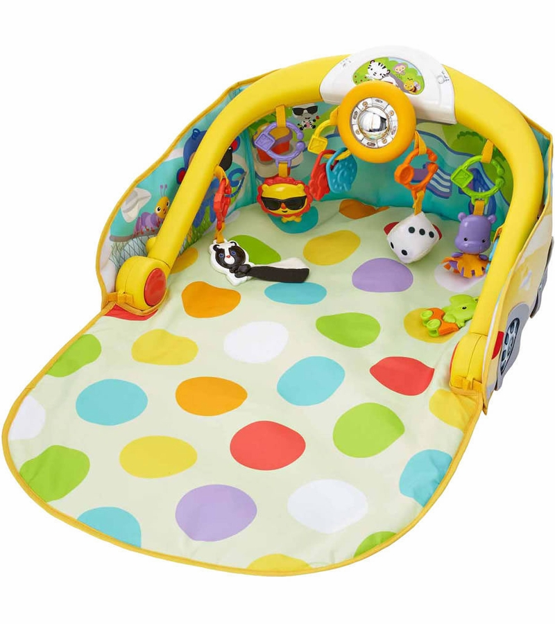 Fisher Price Convertible Car Gym Reviews