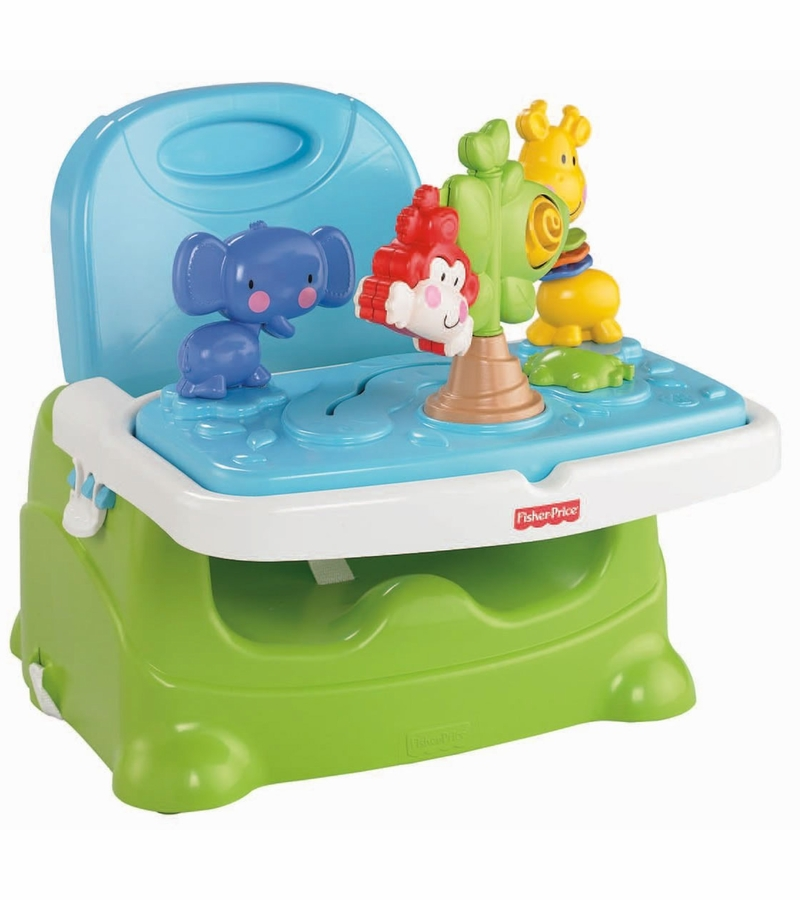 Fisher Price Discover n Grow Busy Baby Booster