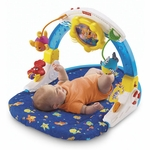 Fisher-Price Ocean Wonders Rockin' Aquarium Gym
