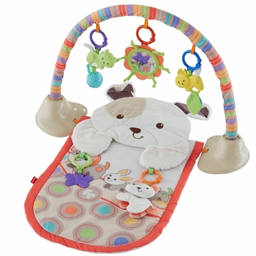 Fisher-Price SnugaPuppy Snuggle 'n Play Gym