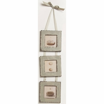 Glenna Jean Preston Wall Art - Hanging Bird Nests Prints