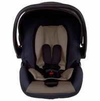 Mountain Buggy Infant Car Seats