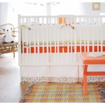 New Arrivals Sundance 4 Piece Baby Crib Bedding Set