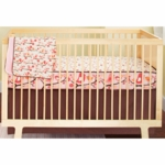 Skip Hop Spring Biride 4 Piece Crib Bedding Set