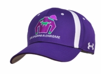 California Chrome Under Armour Stretch Fit Cap