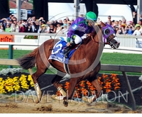 California Chromo Photo 4 - Preakness