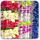 History of Lei Day in Hawaii