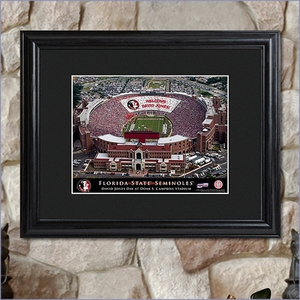 College Stadium Personalized Print with Wood Frame