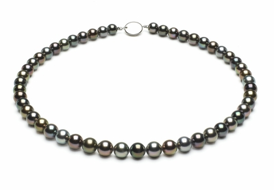 7-3mmto8-6mm-tahitian-south-sea-multi-color-pearl-necklace-aaa-16inch-s5-xr05138m-b99