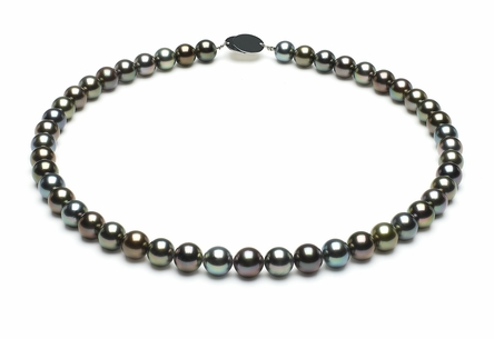 Tahitian Pearl Necklace Serial Number   8-1mmto9-2mm-tahitian-south-sea-multi-color-pearl-necklace-aaa-16inch-s5-xr07300m-b96