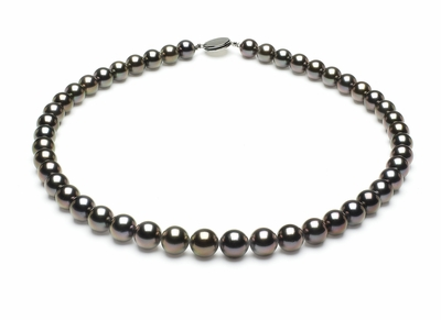 8-1mmto9-7mm-tahitian-south-sea-pearl-necklace-true-aaa-16inch-s5-xa02132-b46
