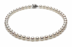 8 x 9mm White High Grade Freshwater Pearl Necklace