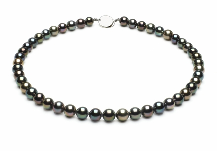 Tahitian Pearl Necklace Serial Number   8mmto8-9mm-tahitian-south-sea-multi-color-pearl-necklace-aaa-16inch-s5-xr06949m-b98