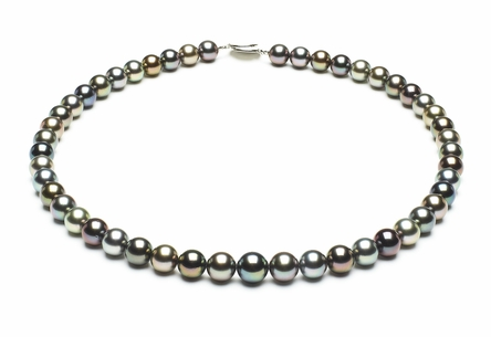 Tahitian Pearl Necklace Serial Number   8mmto9-6mm-tahitian-south-sea-multi-color-pearl-necklace-aaa-16inch-s5-xr05746m-b89