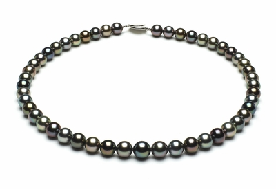 8mmto9-6mm-tahitian-south-sea-multi-color-pearl-necklace-aaa-16inch-s5-xr05746m-b89