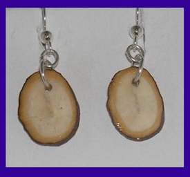 Simple Bark-RimmedPaleo IndianEarringsFossil Walrus Ivory$24.50