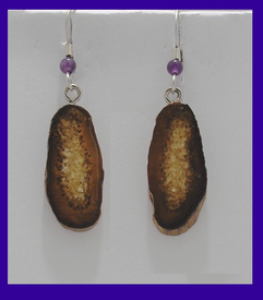Simple Dark CrystallinePaleo IndianEarringsFossil Walrus Ivory$24.50